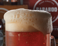 baraboo beer - talk