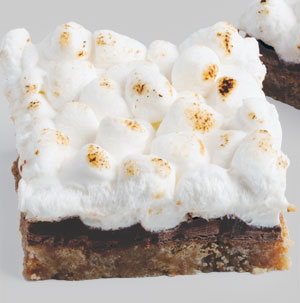 Warm Toasted Marshmallow Smores Bars