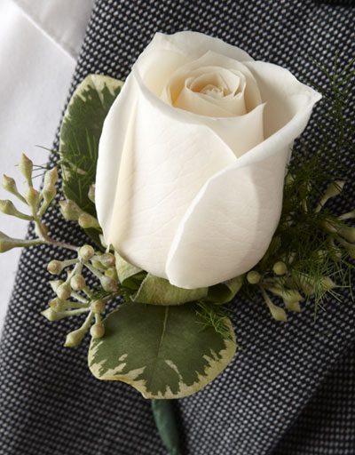shop floral  prom  homecoming  white rose boutonniere, Beautiful flower